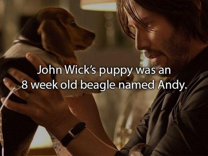 johnwickfacts_010